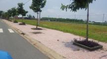 Bán đất bò sữa Long Thành, cách Quốc lộ 51 200m,Ngay KCN Long Thanh
